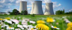 fight environmental destruction